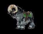 Black Ram(WoW Classic)